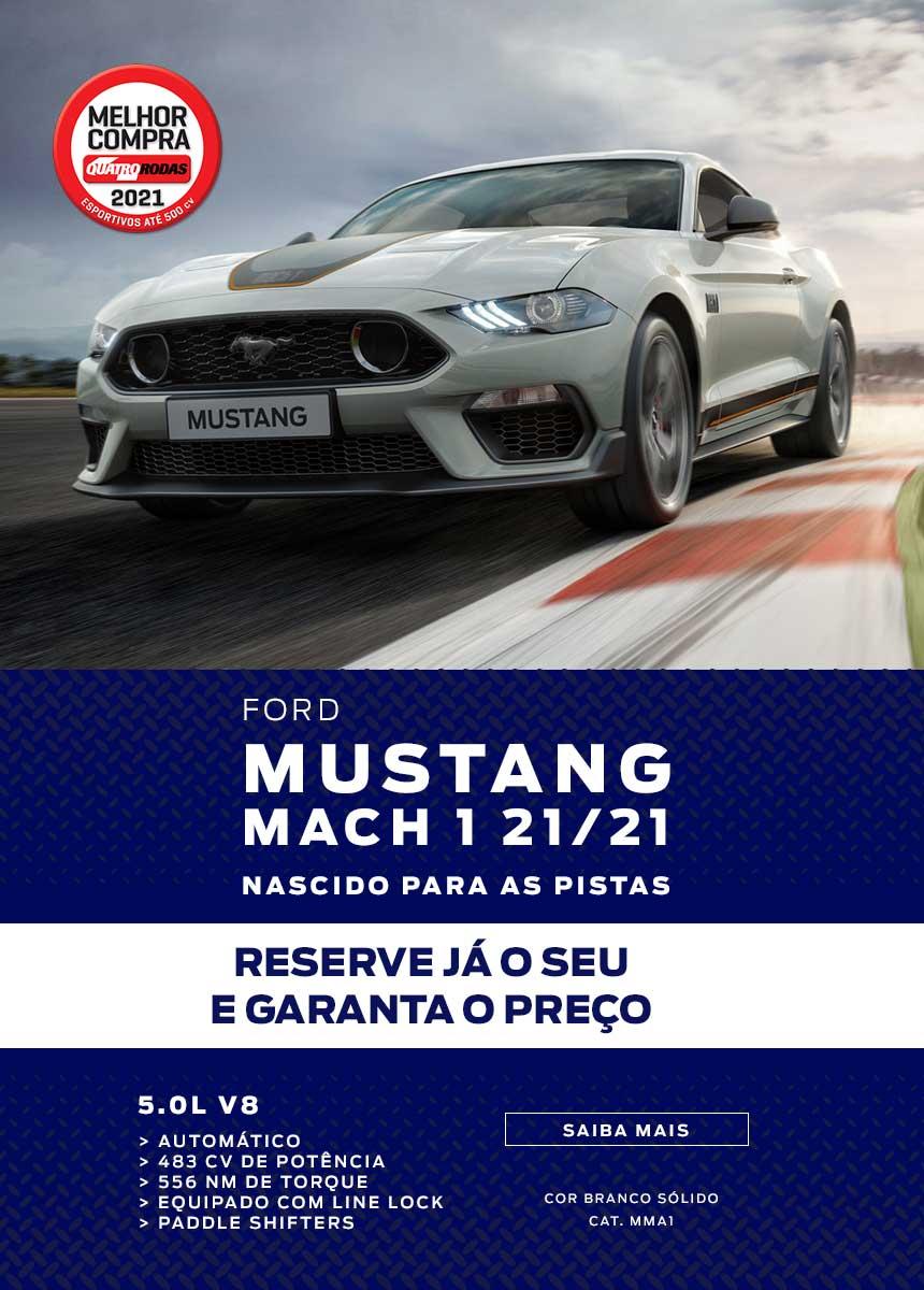 Novos > RP > Mustang